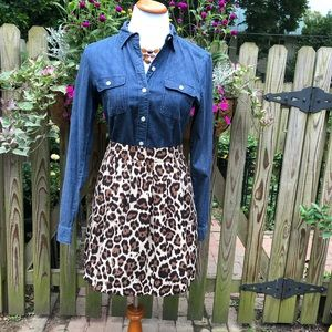 Banana Republic Leopard Print Circle Skirt